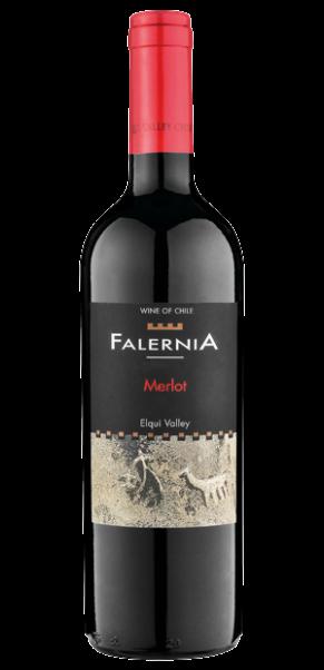 Viña Falernia, Merlot DO, Elqui Valley