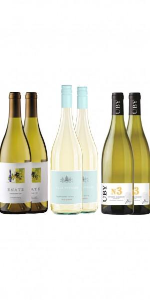 6 Flaschen Weisswein im Spar-Probier-Pack