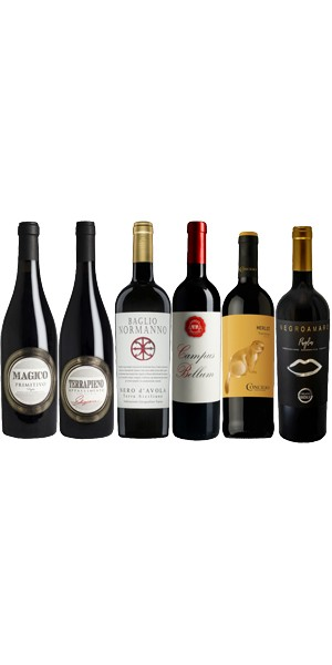6er Probierpaket Rotwein-Bestseller Italien