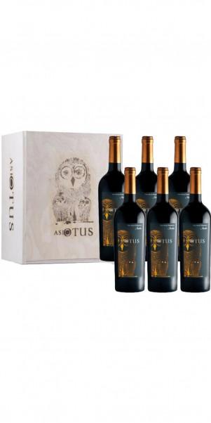 6er Holzkiste Asio Otus Rosso, Vino Varietale d´Italia