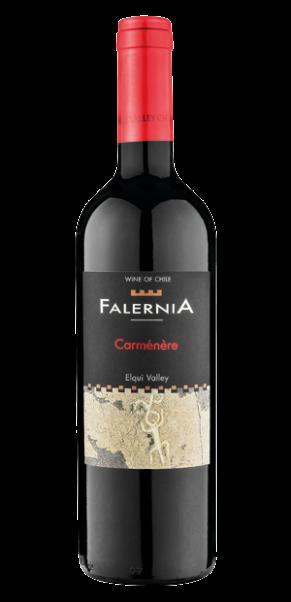 Viña Falernia, Carmenere, DO Elqui Valley