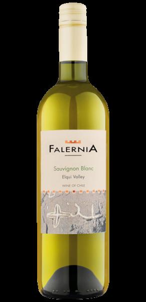Viña Falernia, Sauvignon Blanc, DO Elqui Valley